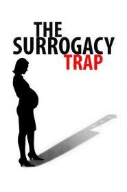 Maternité à risque